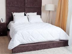 Элитное одеяло стеганое лёгкое 200х220 German Grass 95C