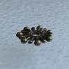 """Бусина металлическая - рондель """"Снежинка"""" (цвет - античная бронза) 9х1,4 мм, 10 штук"""