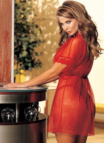 фото жены в прозрачном халате при сантехнике