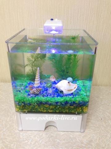 Мини аквариум куб 3 л с подсветкой №0022