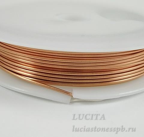 Проволока латунная 0,8 мм, цвет - медь, примерно 3 метра (DSCN9429_exposure)