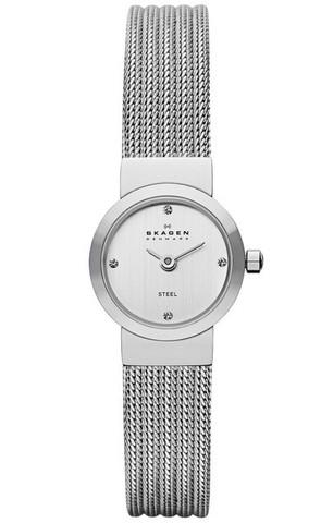 Купить Наручные часы Skagen SKW2010 по доступной цене