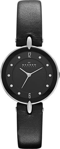 Купить Наручные часы Skagen SKW2011 по доступной цене