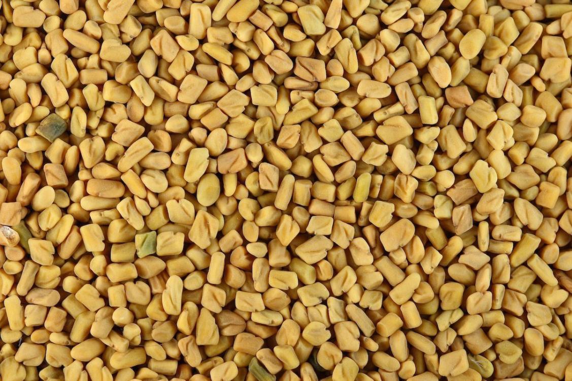 Пажитник семена BIO, 100г (Италия)