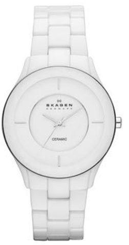 Купить Наручные часы Skagen SKW2066 по доступной цене