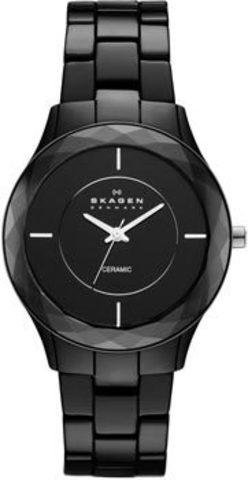 Купить Наручные часы Skagen SKW2067 по доступной цене