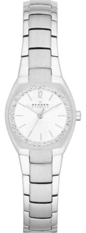 Купить Наручные часы Skagen SKW2110 по доступной цене