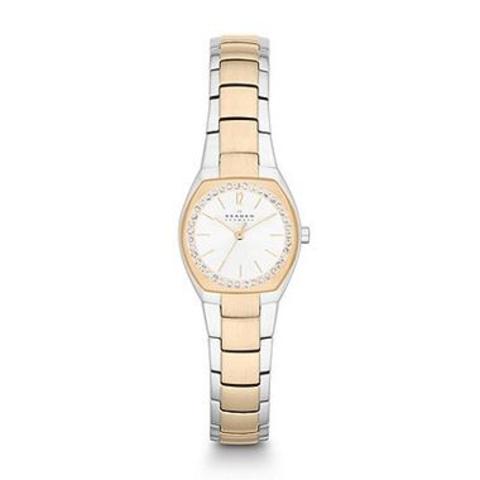 Купить Наручные часы Skagen SKW2111 по доступной цене