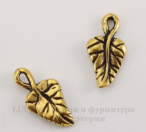 "Подвеска TierraCast ""Листик плюща"" (цвет-античное золото) 16х8 мм"