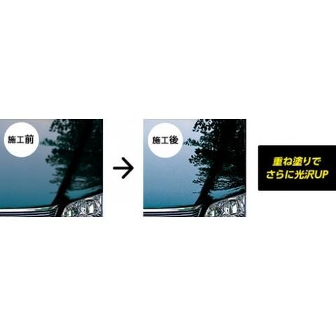 Полироль кузова W-10 Rinrei 2073-02