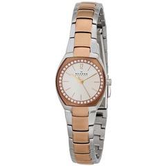 Наручные часы Skagen SKW2112