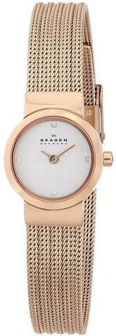 Купить Наручные часы Skagen SKW2132 по доступной цене