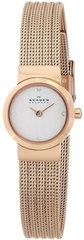 Наручные часы Skagen SKW2132