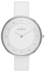 Наручные часы Skagen SKW2136
