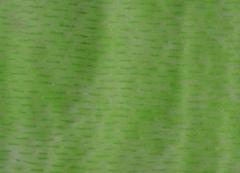 Фетр с рисунком полосы на зеленом 10м*50см
