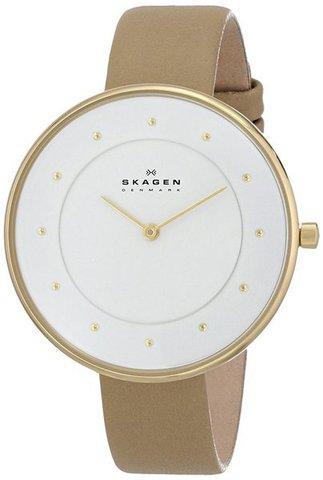 Купить Наручные часы Skagen SKW2137 по доступной цене