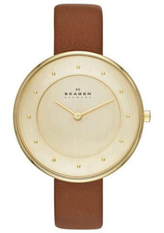 Купить Наручные часы Skagen SKW2138 по доступной цене