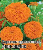 Бархатцы пр. Дюн Оранж  250 шт.