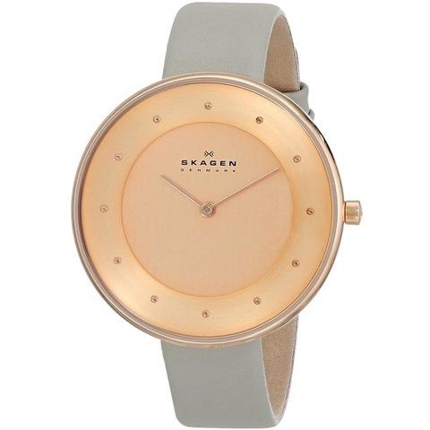 Купить Наручные часы Skagen SKW2139 по доступной цене