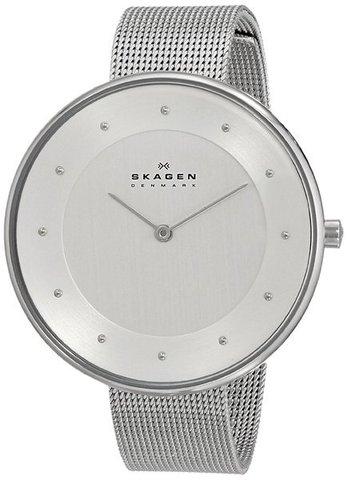 Купить Наручные часы Skagen SKW2140 по доступной цене