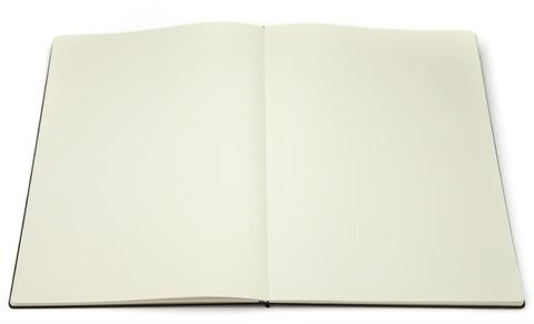 Альбом Folio Sketchbook A3