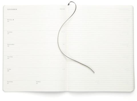 Еженедельник XLarge  Soft  (18 мес., 2009/10)