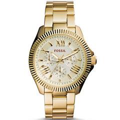 Наручные часы Fossil AM4570