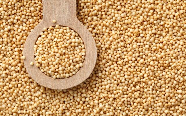 Амарантовые семена - сырье для произвлодства амарантового масла