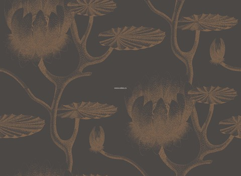Обои Cole & Son Contemporary Restyled 95/4021, интернет магазин Волео