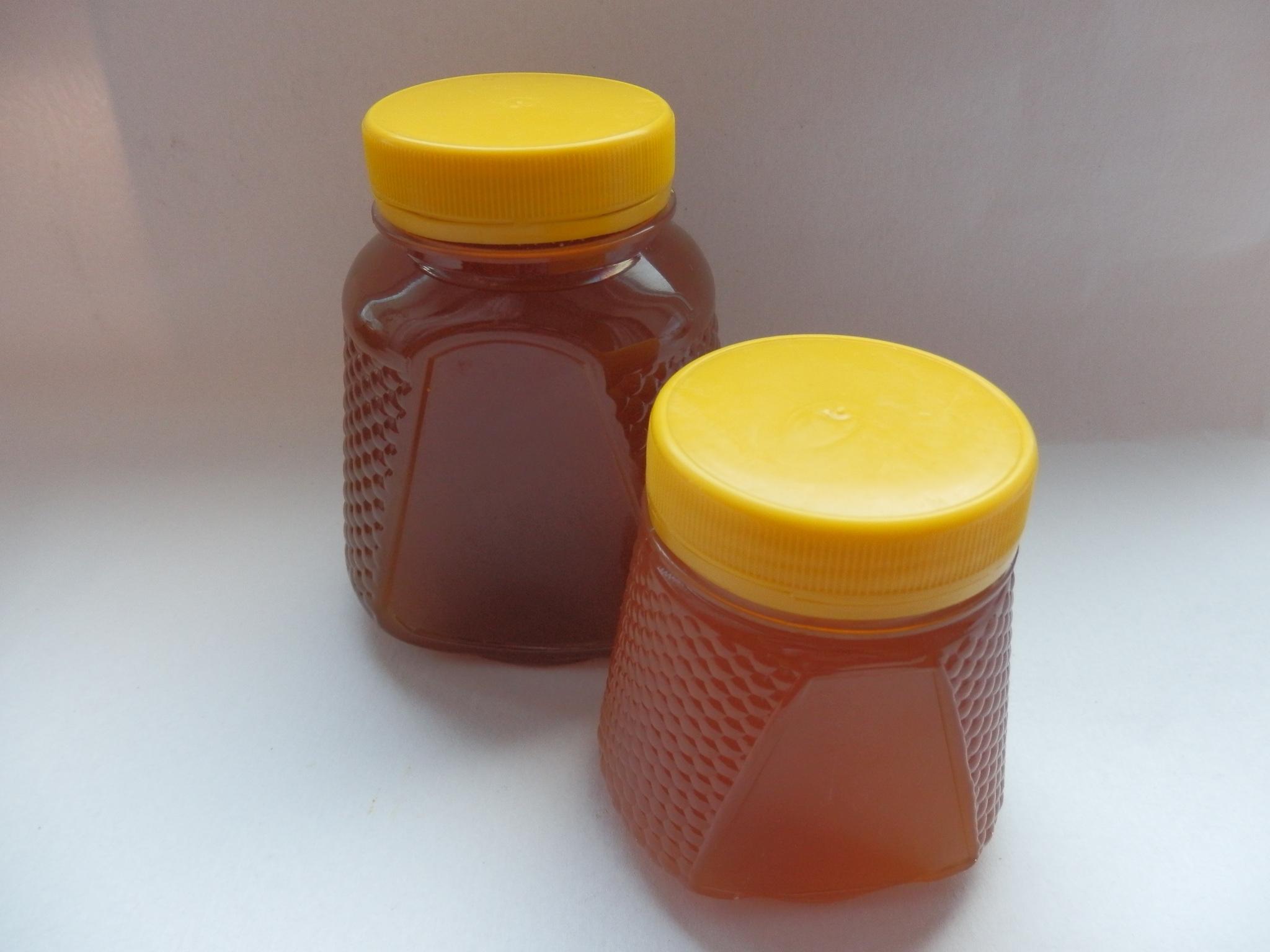 мед донниковый фото 5