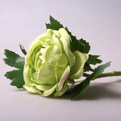 Ранункулюс зеленый 142-4