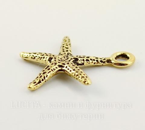 """Подвеска TierraCast """"Морская звезда"""" (цвет-античное золото) 21х18 мм"""