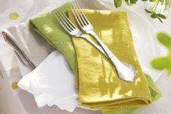 Салфетки 50х50 Proflax Sven limone