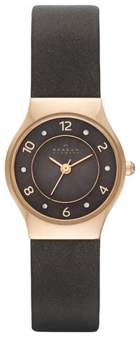 Купить Наручные часы Skagen SKW2208 по доступной цене