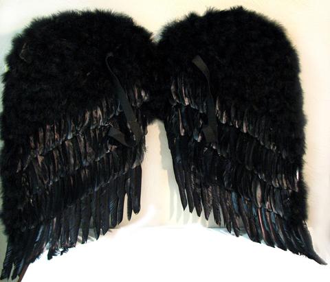 Крылья перьевые черные