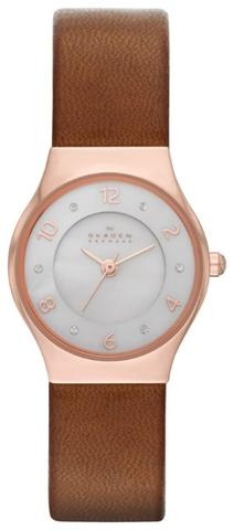 Купить Наручные часы Skagen SKW2210 по доступной цене