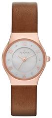 Наручные часы Skagen SKW2210