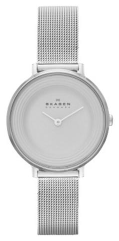 Купить Наручные часы Skagen SKW2211 по доступной цене