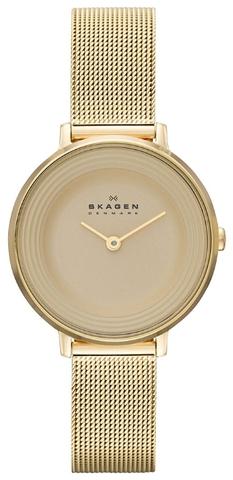 Купить Наручные часы Skagen SKW2212 по доступной цене