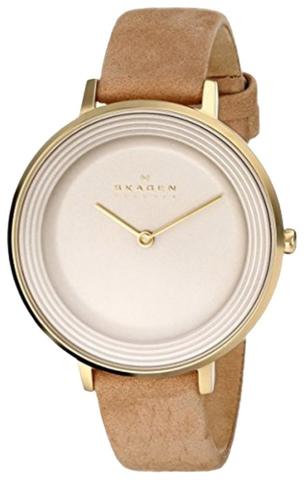 Купить Наручные часы Skagen SKW2215 по доступной цене