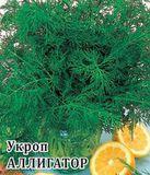 Укроп Аллигатор 25,0 г