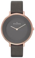Наручные часы Skagen SKW2216