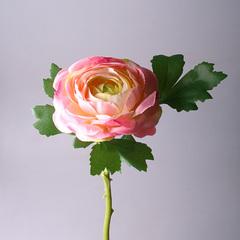 Ранункулюс розовый , арт.142-1