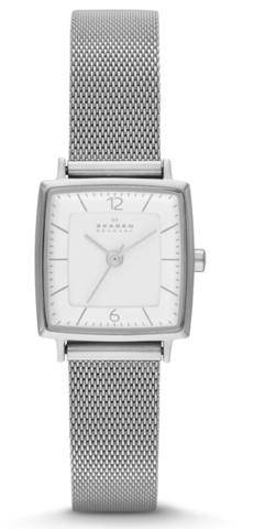 Купить Наручные часы Skagen SKW2217 по доступной цене