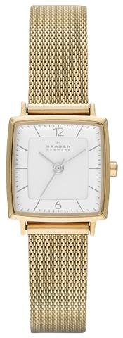 Купить Наручные часы Skagen SKW2218 по доступной цене