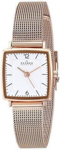 Купить Наручные часы Skagen SKW2219 по доступной цене