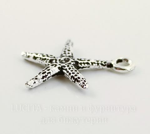 """Подвеска TierraCast """"Морская звезда"""" (цвет-античное серебро) 21х18 мм"""