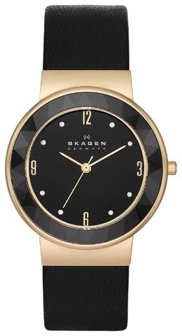 Купить Наручные часы Skagen SKW2222 по доступной цене