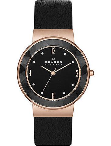 Купить Наручные часы Skagen SKW2223 по доступной цене