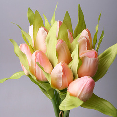 Букет тюльпанов бледно-розовый из 9-ти шт., 5568-2